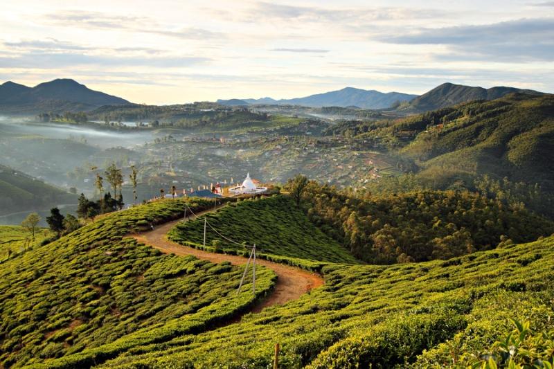 Altopiani centrali dello Sri Lanka
