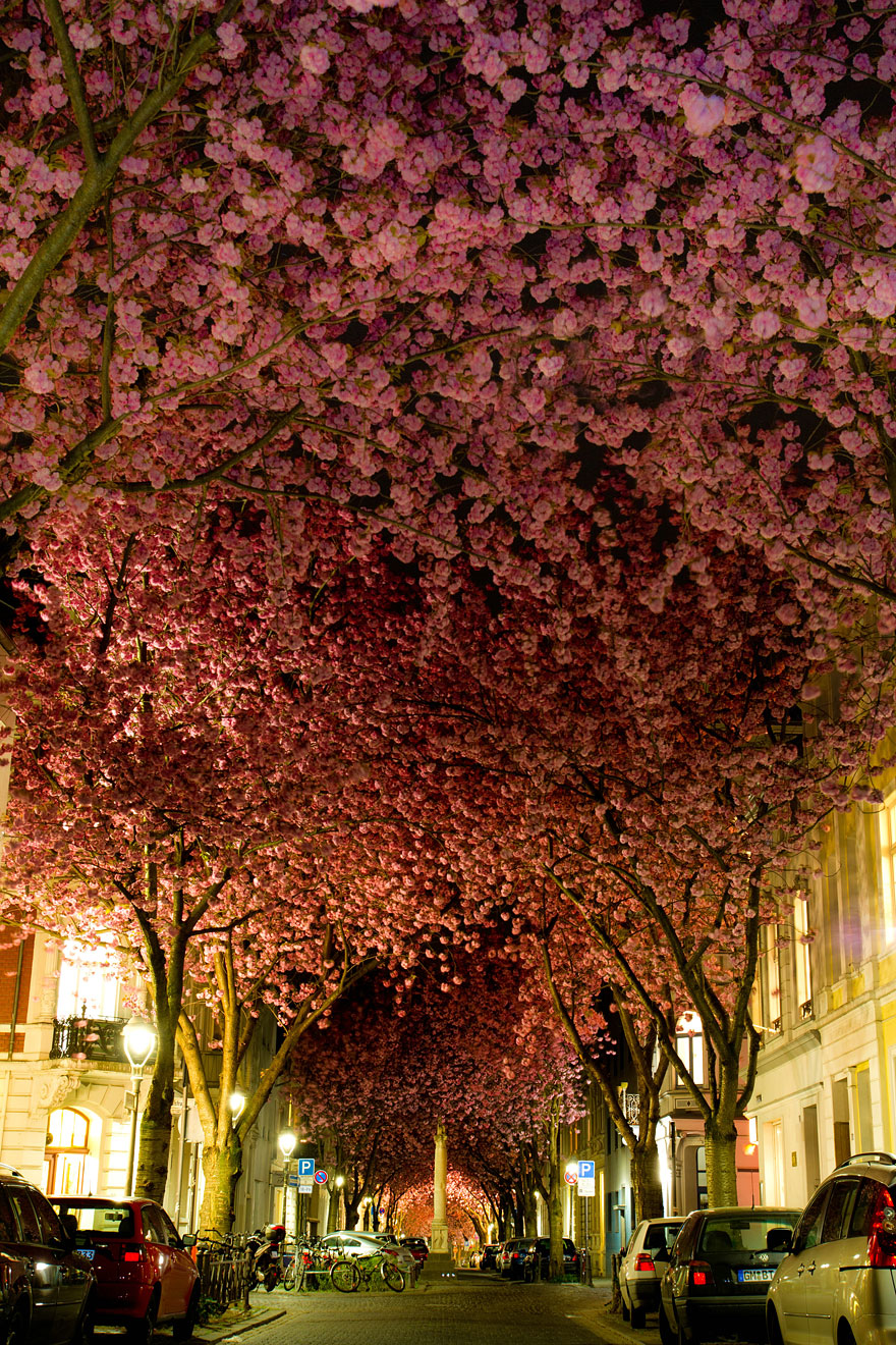 Strada a Bonn, Germania