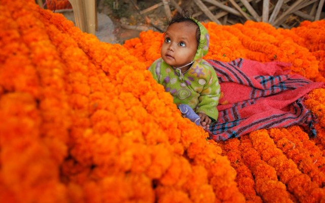 bambino indiano in mezzo ai fiori diwali