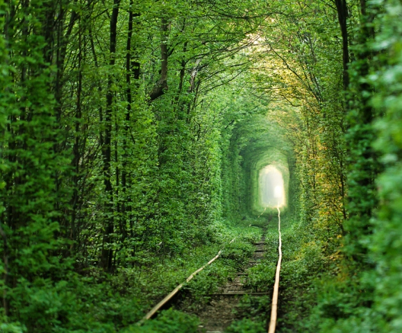 tunnel_of_love (1)