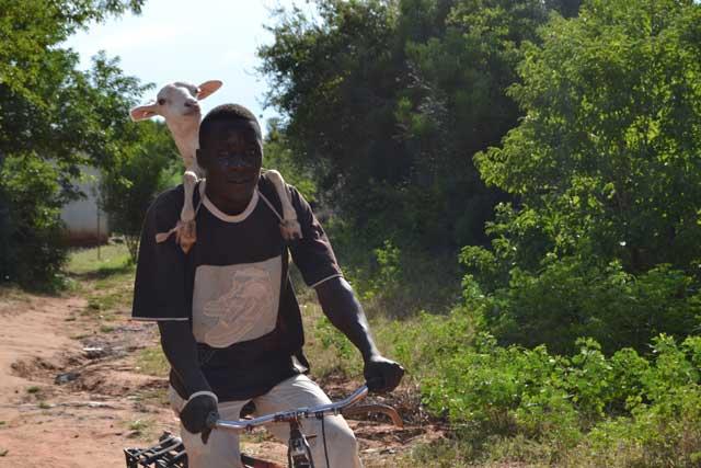 foto di sabrina ferrario in africa aprile 2015 (6)
