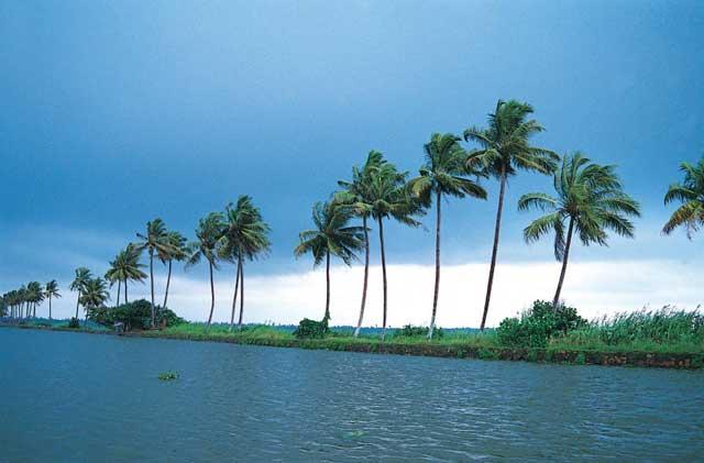 crociera kerala backwaters gallerai (7)